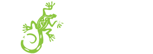 El Camino Mexican Kitchen Home