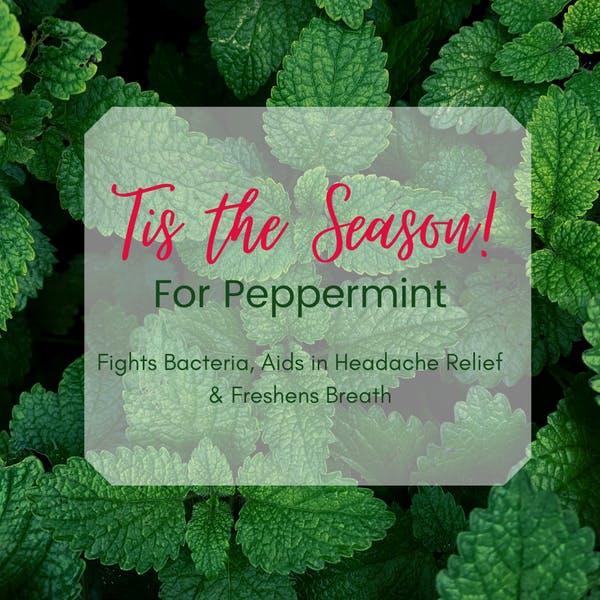 peppermint blog