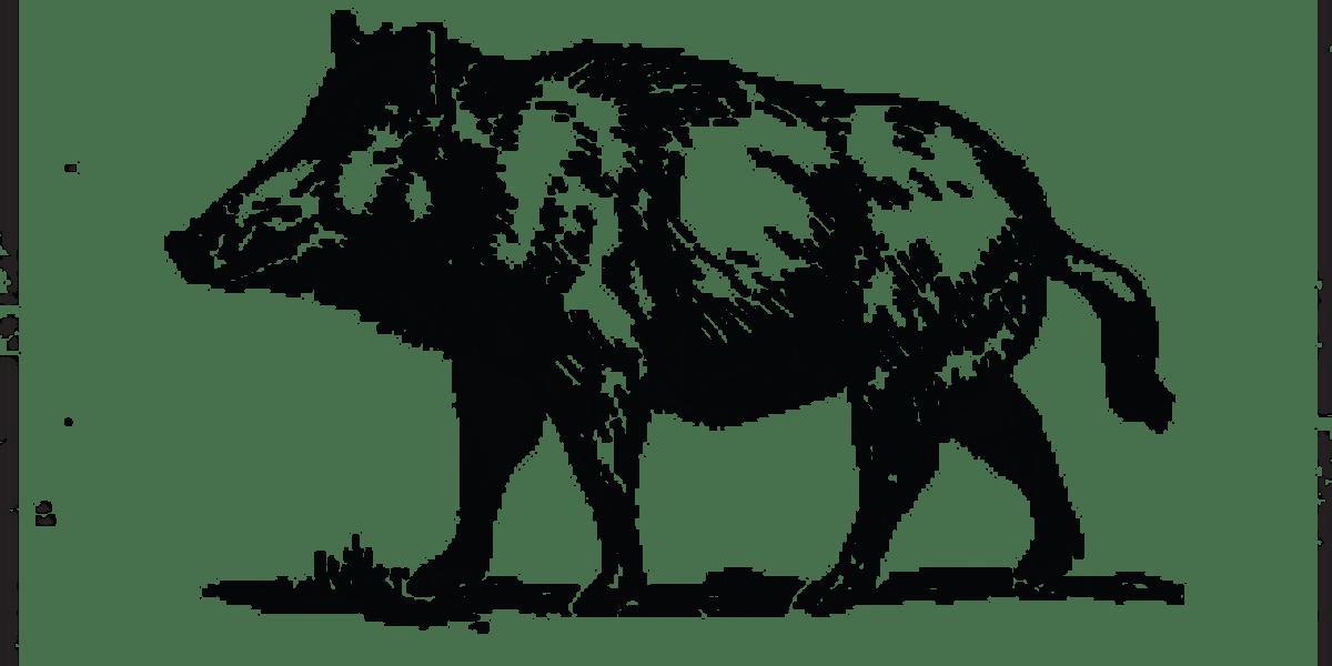 Wild Boar The Frontier