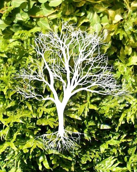 Tree Image Placeholder