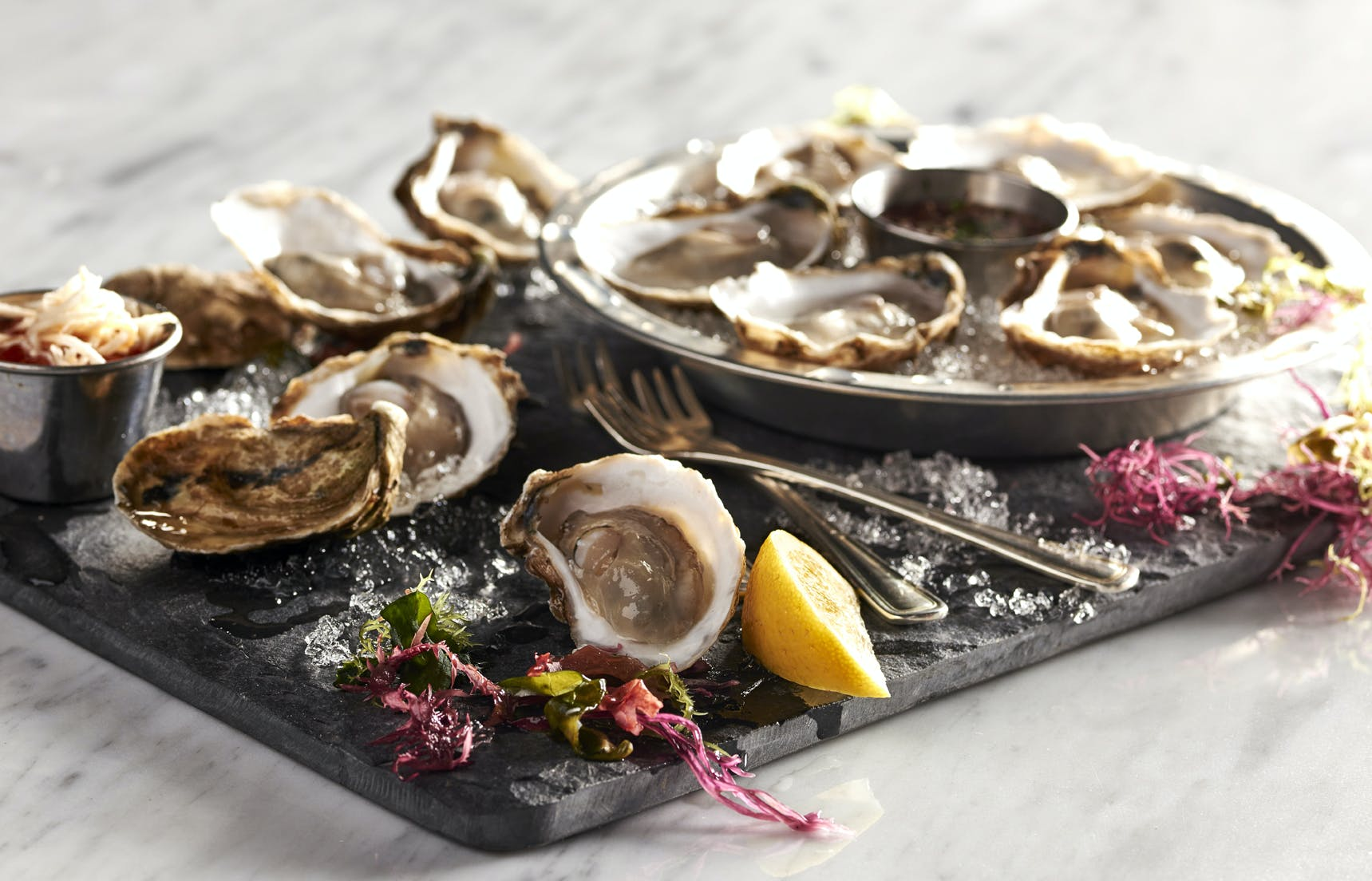 a close up of a plate of oysters