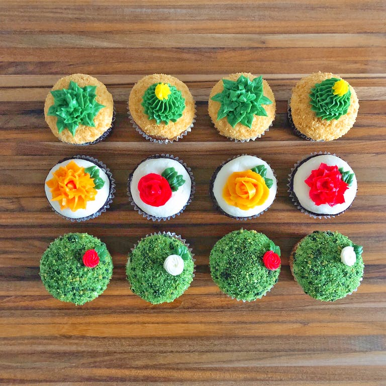 lineup of cupcakes