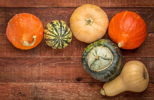 Different Types of Squash - Winter