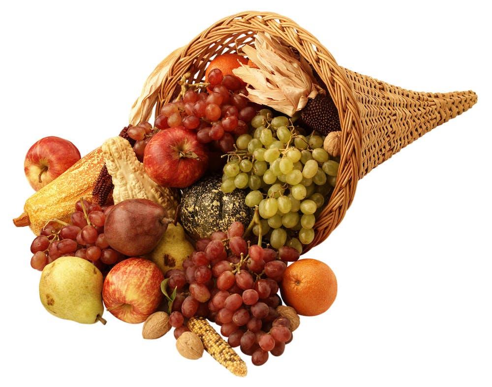 a piece of fruit