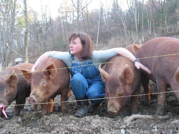 Photo of Flying Pigs Farm