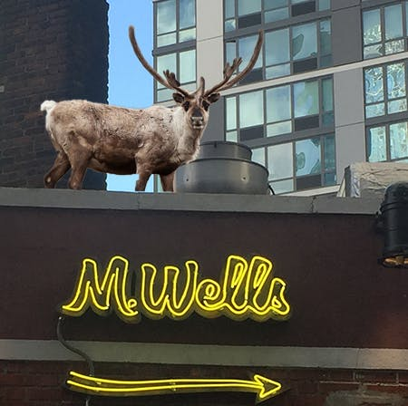a couple of sheep standing on top of a building