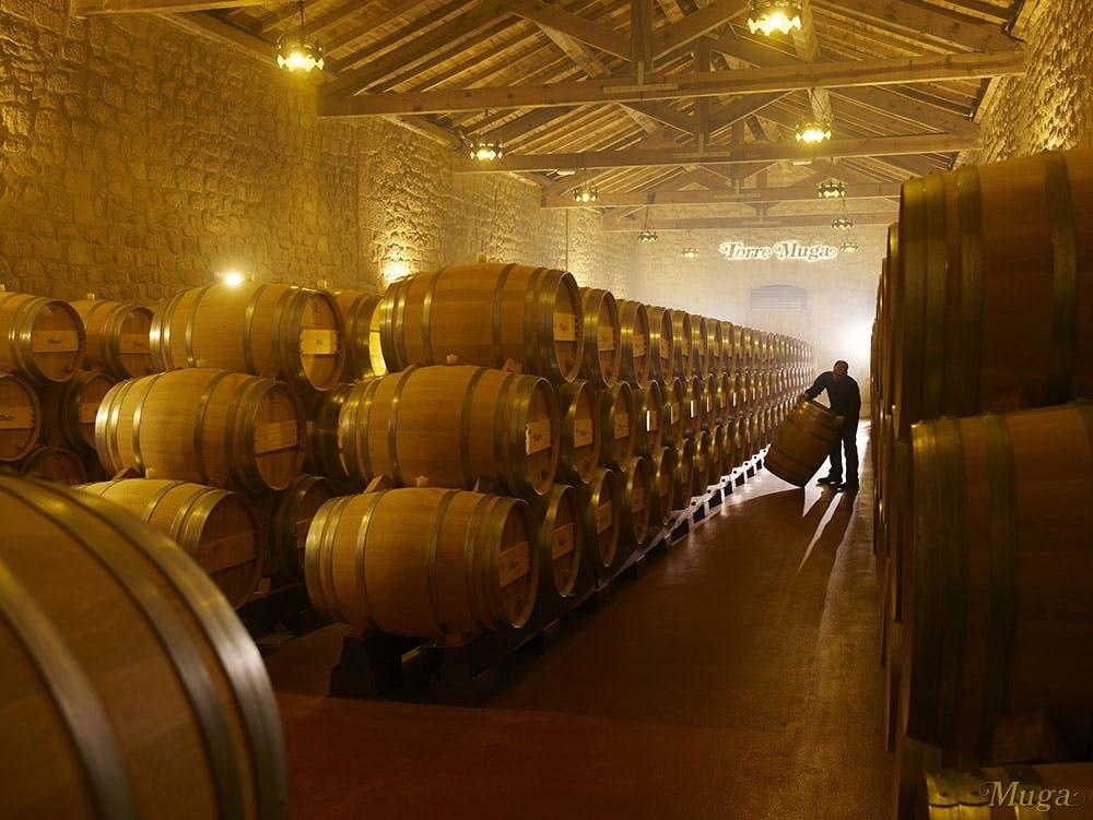 Muga Winery barrels