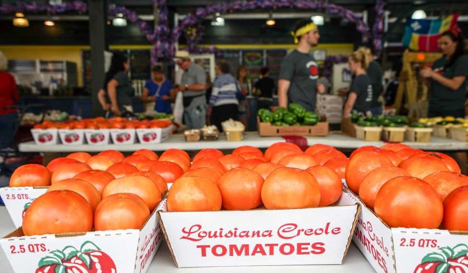 creole tomatoes summer seasonal vacation nola