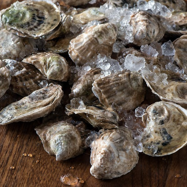Oyster Week: March 16-20