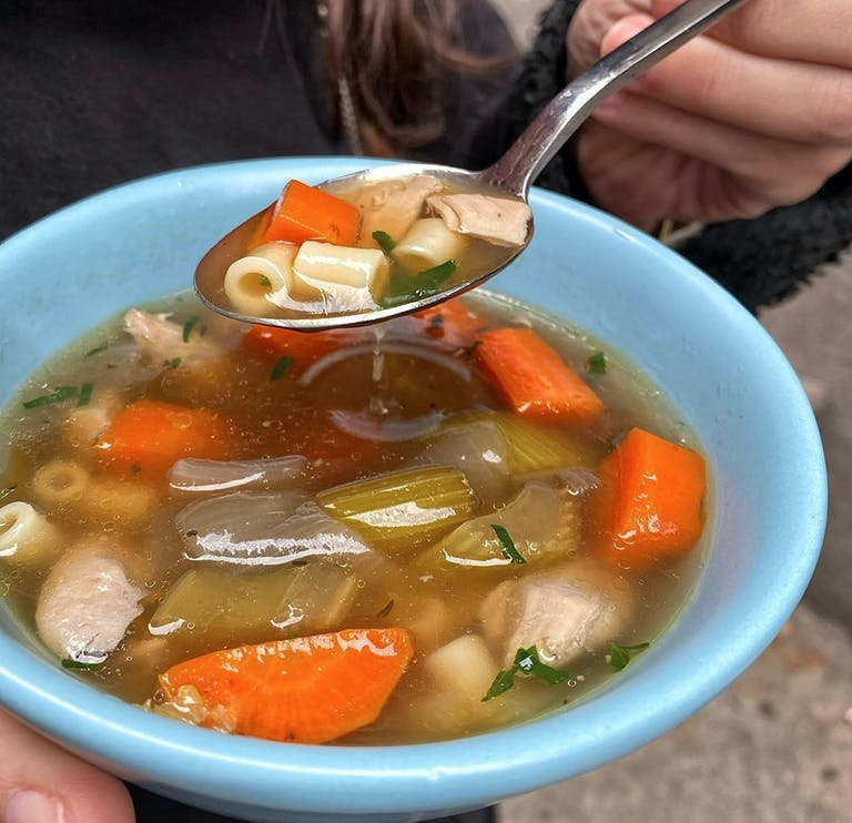 a bowl of chicken soup