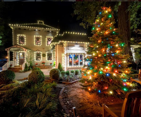 image of perrys larkspur decorated with holiday lights