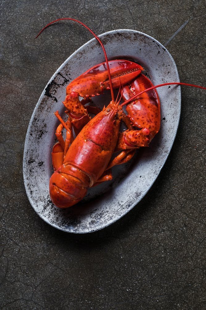 a lobster on a plate