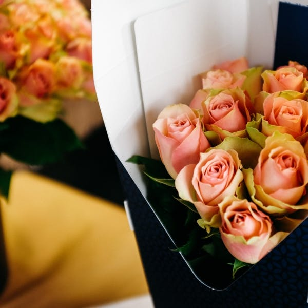 two boxes of flower