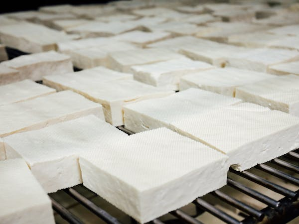 a bunch of tofu blocks on a grill