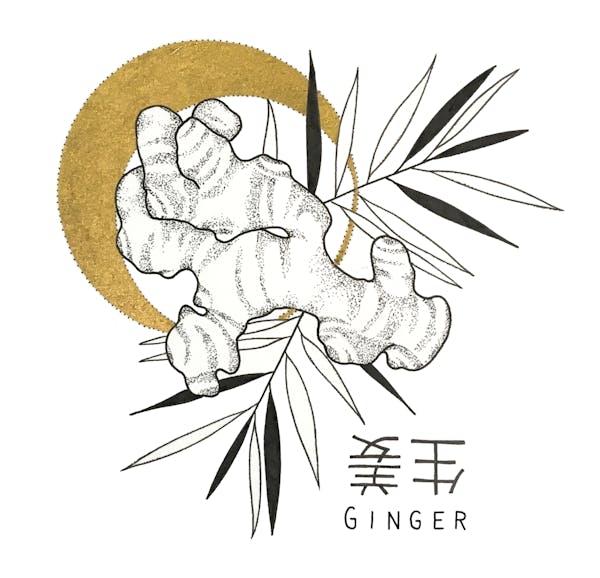 King's co - Ginger