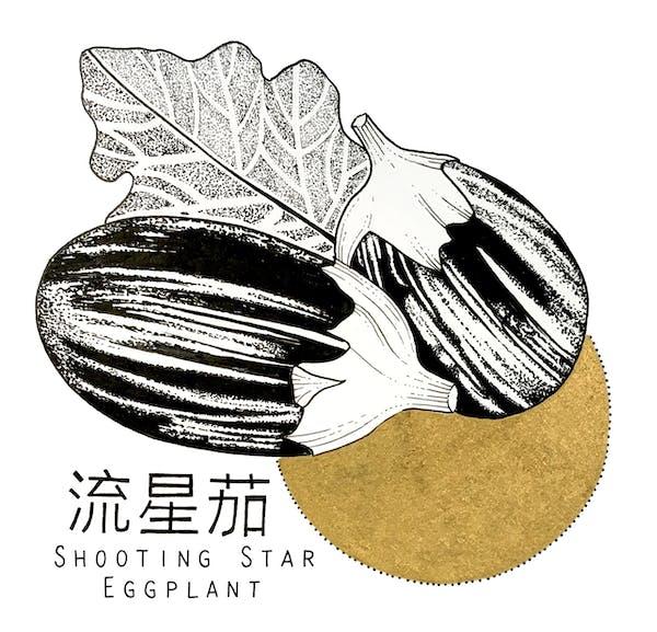 King's co - Shooting Star Eggplant