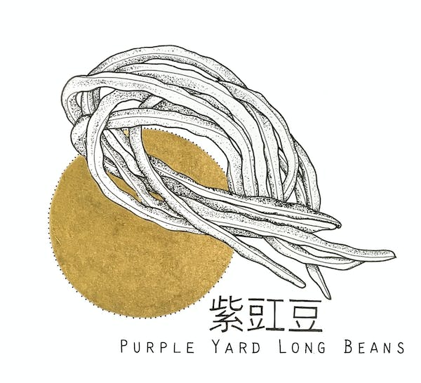 King's co - Purple Yard Long Beans