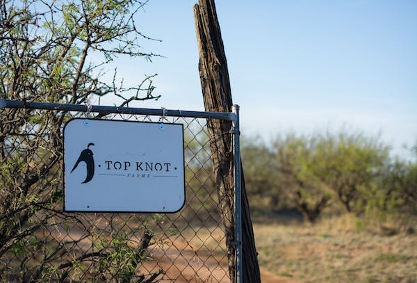 Photo of Top Knot Farms
