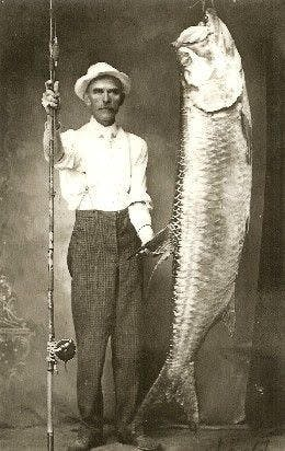 a person holding a fish posing for the camera