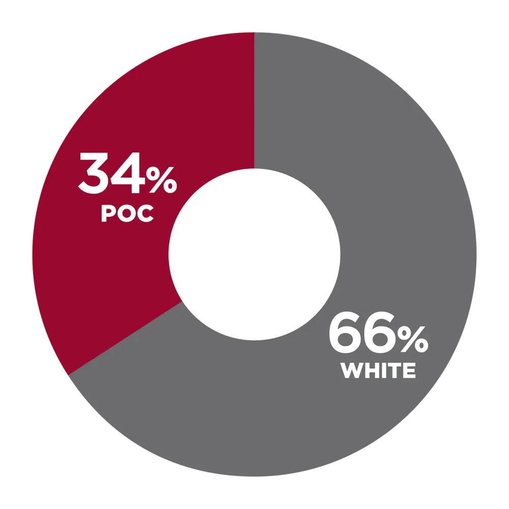 34% People of Color, 66% White