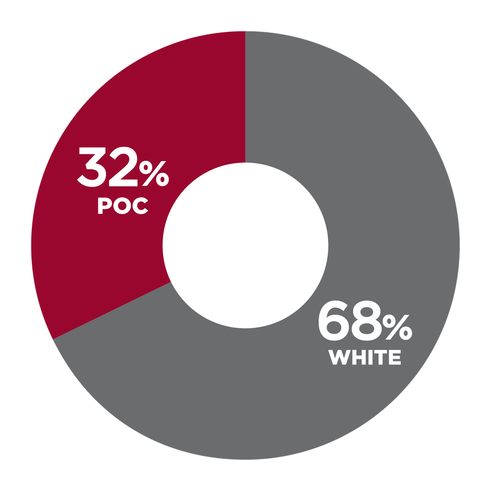 pie chart showing 32% People of Color, 68% White