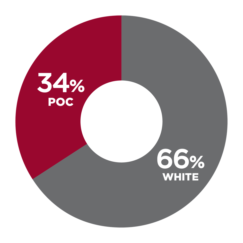 pie chart showing 34% People of Color, 66% White