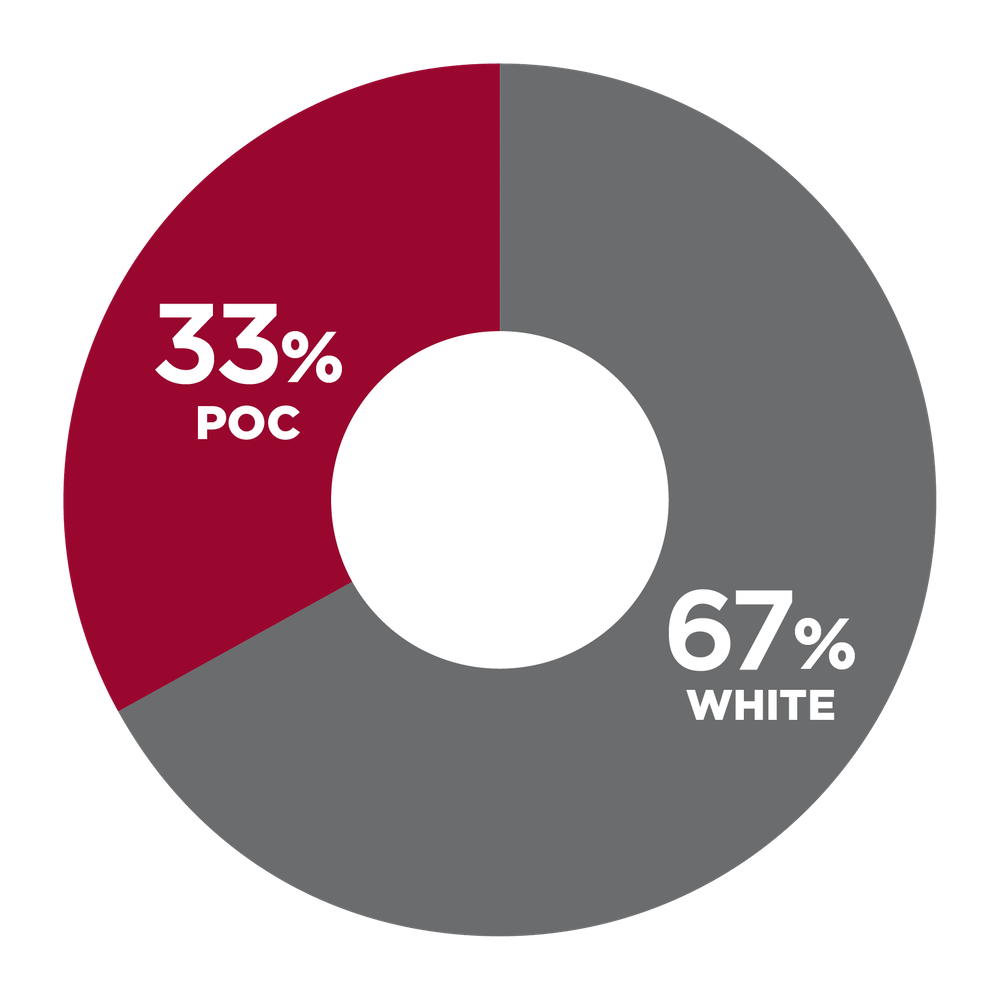 pie chart showing 33% People of Color, 67% White