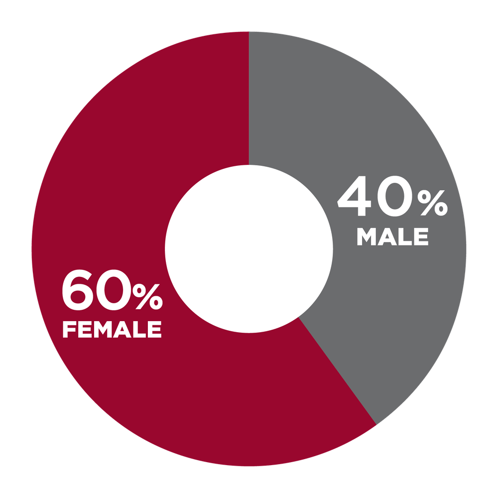 pie chart showing 60% Female, 40% Male