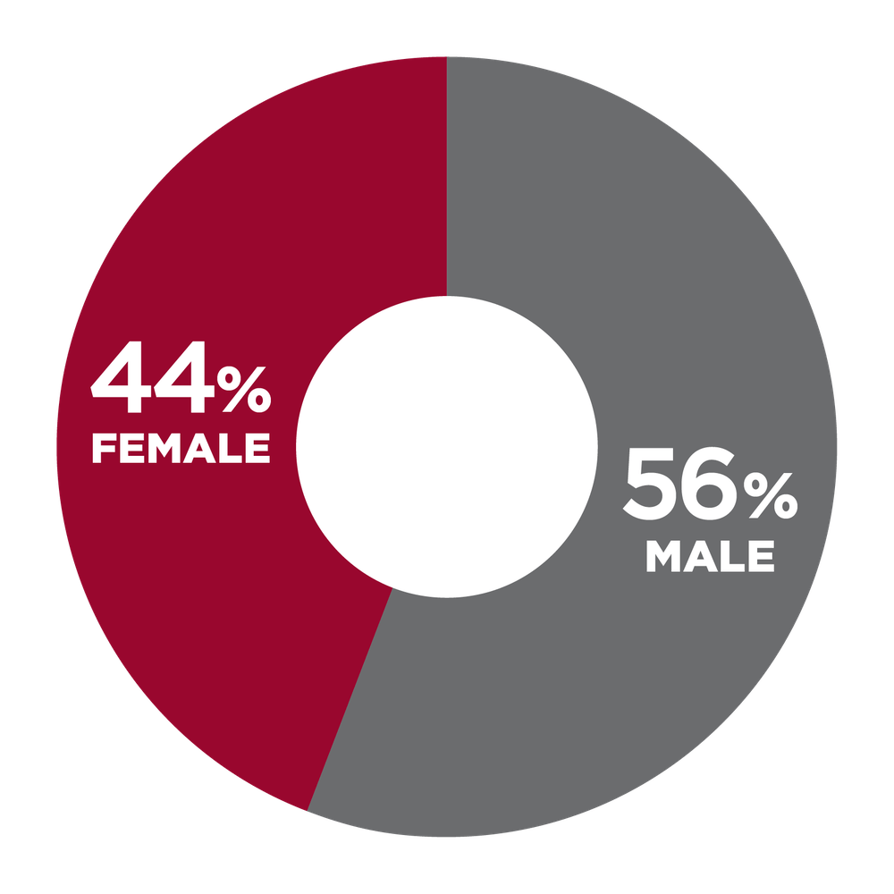 pie chart showing 44% Female, 56% Male