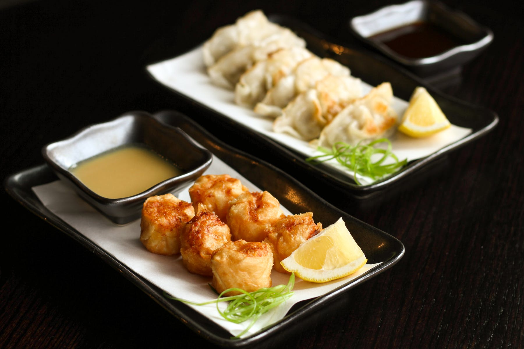 Fried Shumai and Gyoza Dumplings