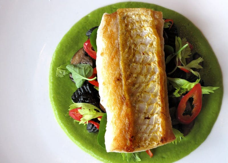 a salad bed topped with a grilled fish steak