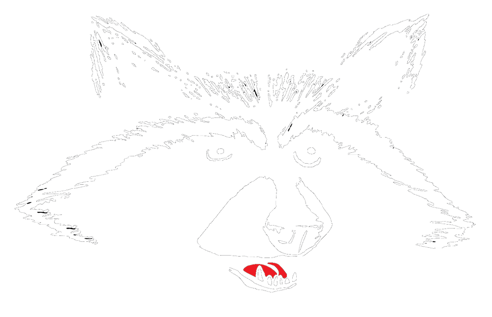 raccoon drawing logo