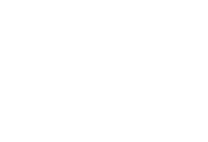 the jones logo