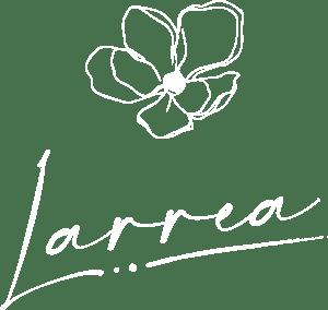 Larrea Vegas