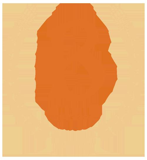 Blarney Stone Pub Home