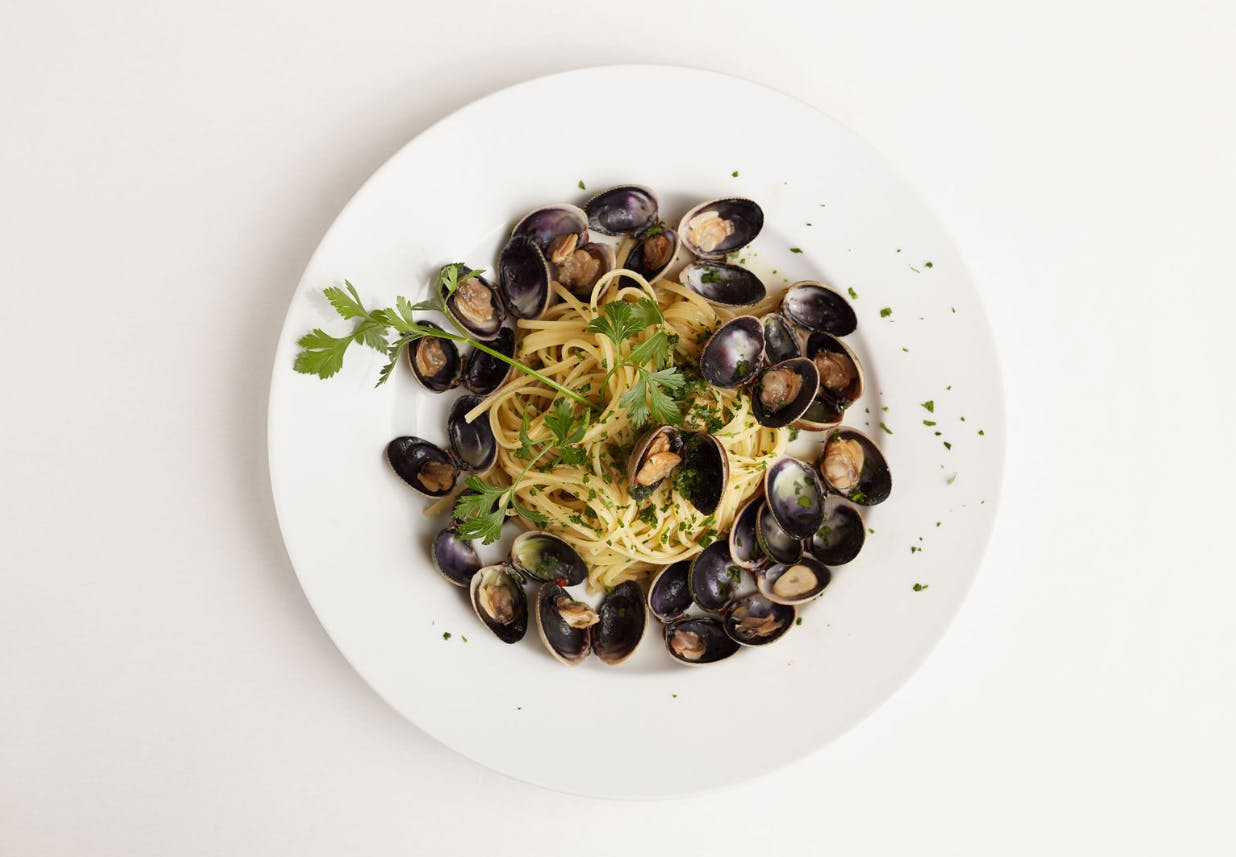 a white plate topped with fettuccine alfredo with mussels