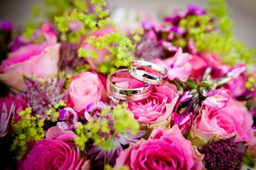 a close up of a flower and marriage rings