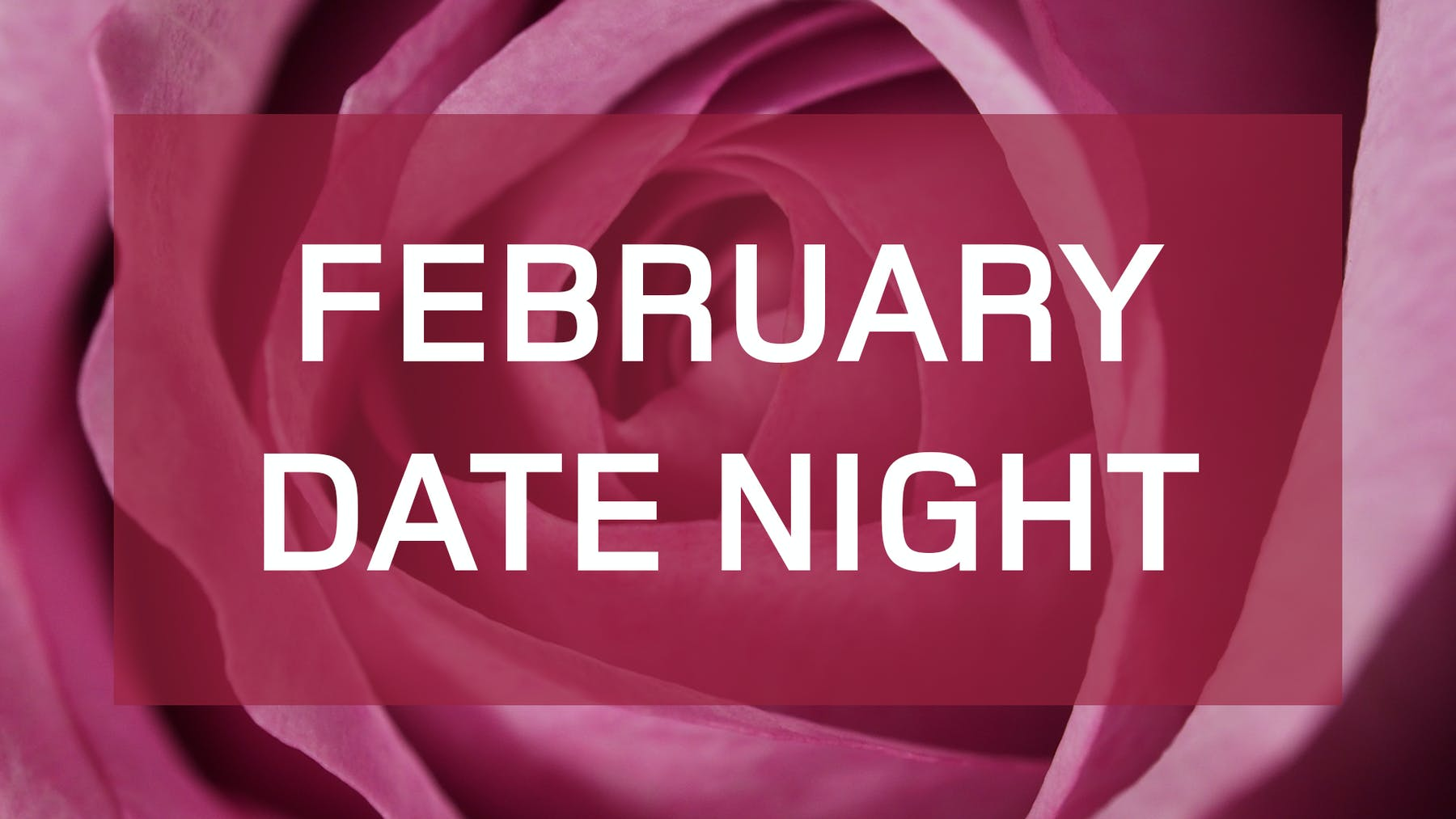 pink rose, February Date Night