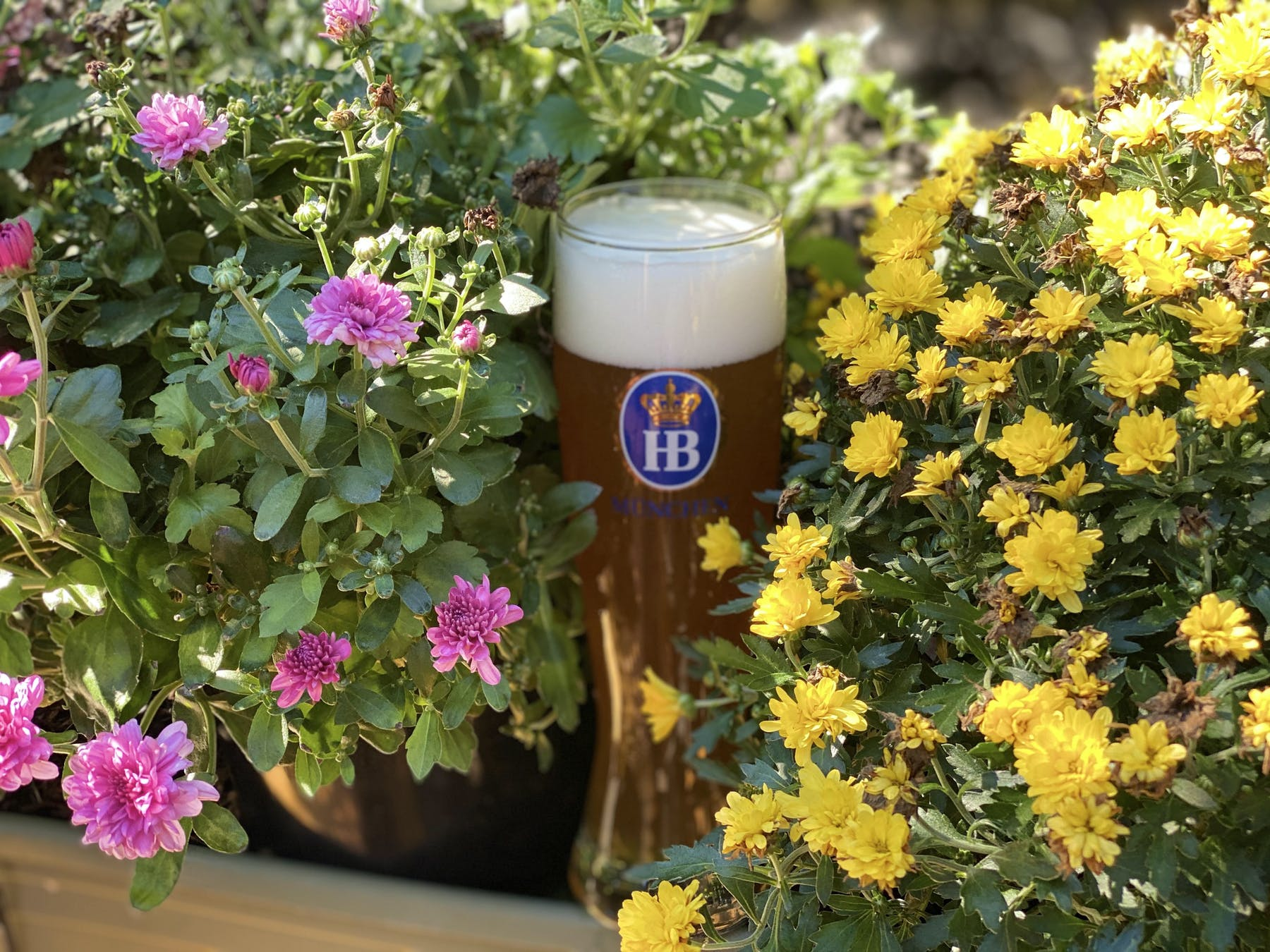a beer glass with flowers around it