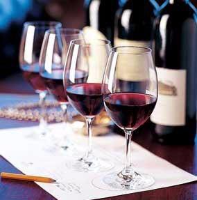 Wine Fundamentals 1