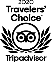 tripadvisor travelers' choice logo