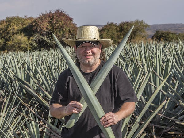 a man holding agave leaves