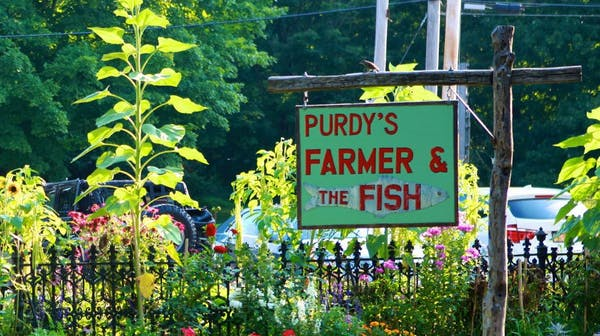 Photo of PURDY'S FARMER & THE FISH