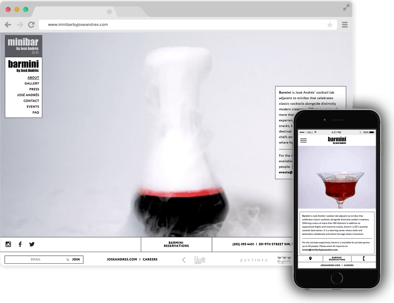 a screenshot of Barmini website