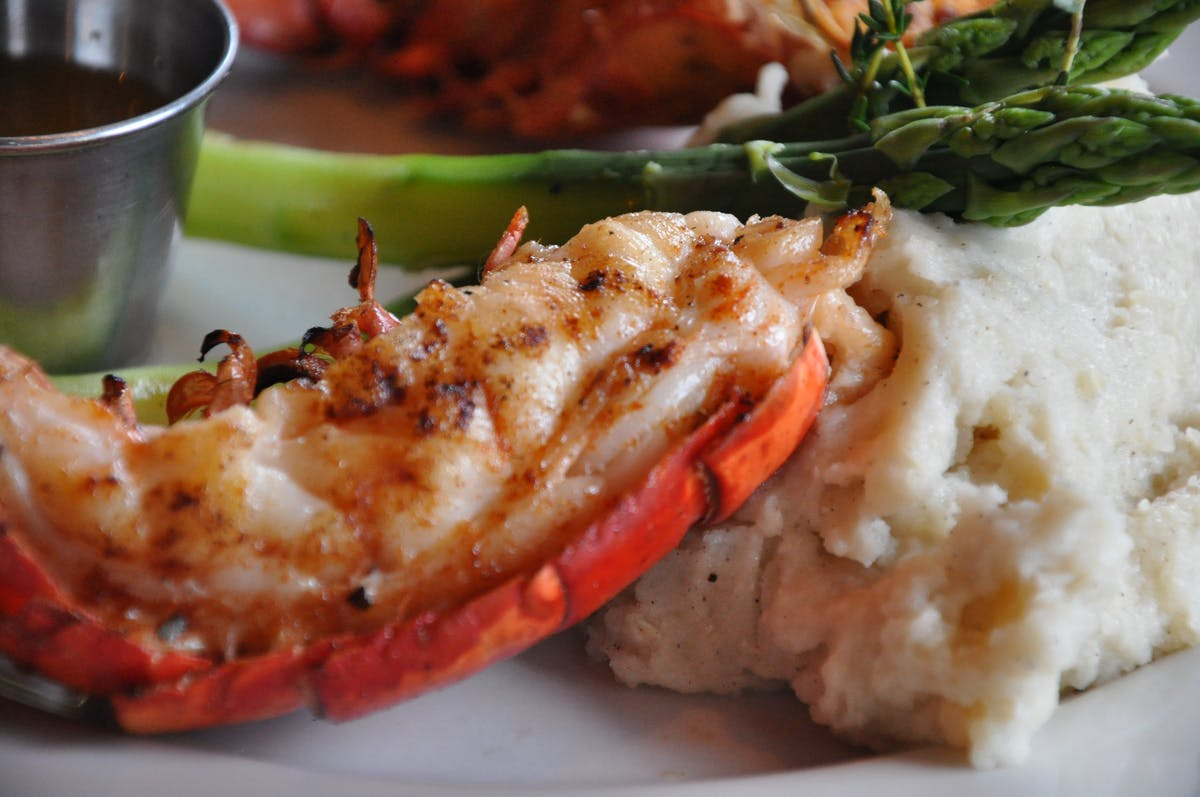 a closeup of a cooked lobster sitting next to mashed potatoes
