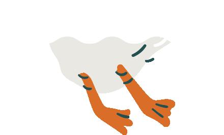 Mamahuhu Home