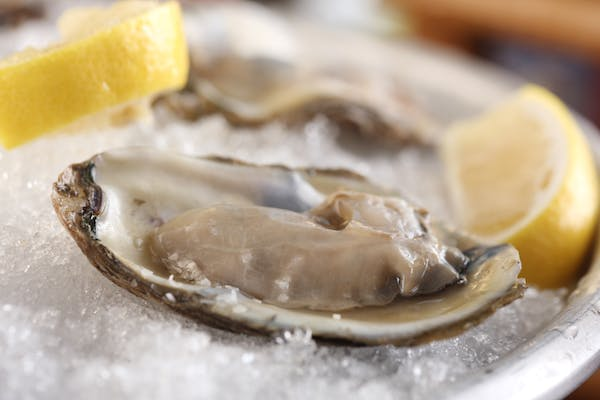 Photo of Oyster Tuesdays