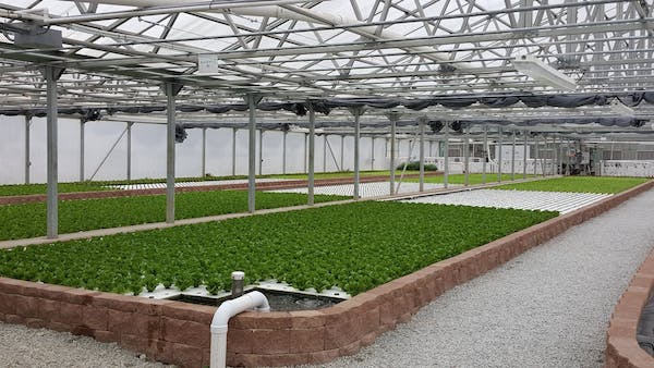 Photo of Green River Greenhouse