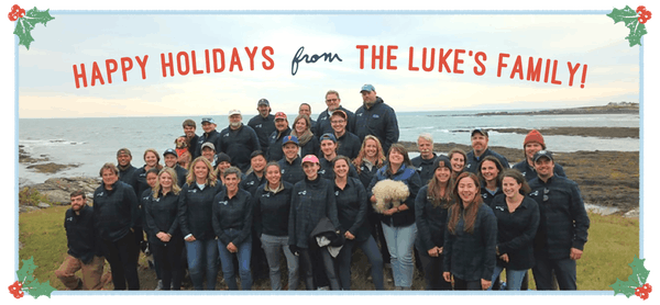 lukes lobster team