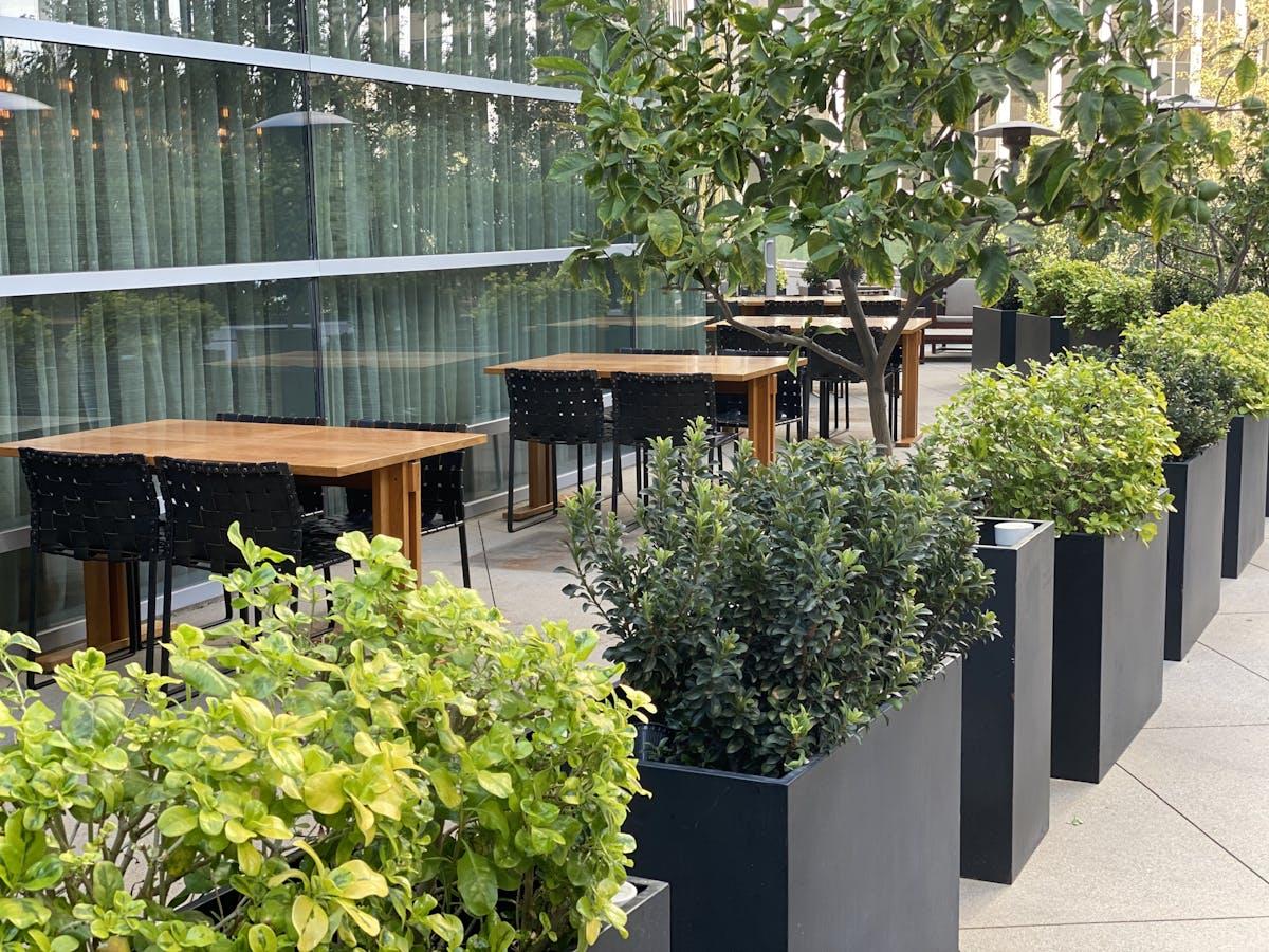 a bench in a garden